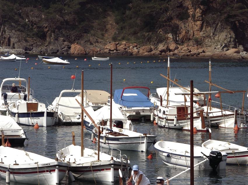 Embarcaciones amarradas en el puerto deportivo de Llafranc  (Marc Ripol)