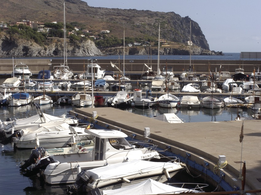 Boats moored in the Colera Marina  (Marc Ripol)