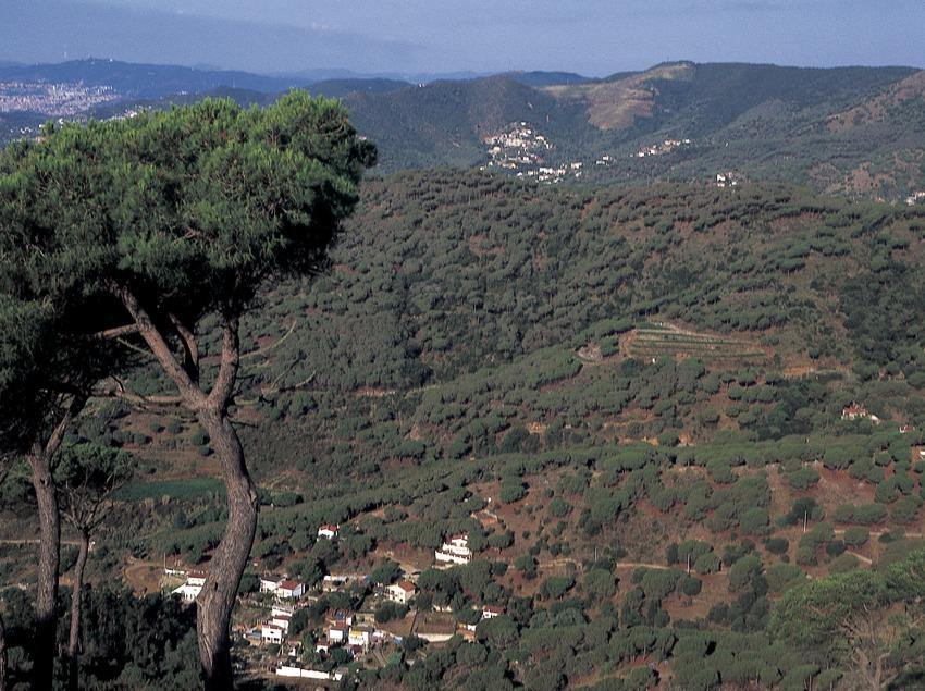 View of the coastal mountain range
