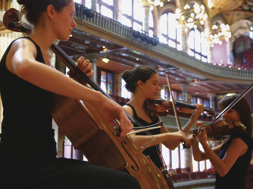 Palau de la Música durante un ensayo de la OCB. Violoncelista  (Lluís Carro)