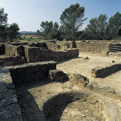 Carrer del poblat ibèric del Puig de Sant Andreu d'Ullastret.  (Imagen M.A.S.)