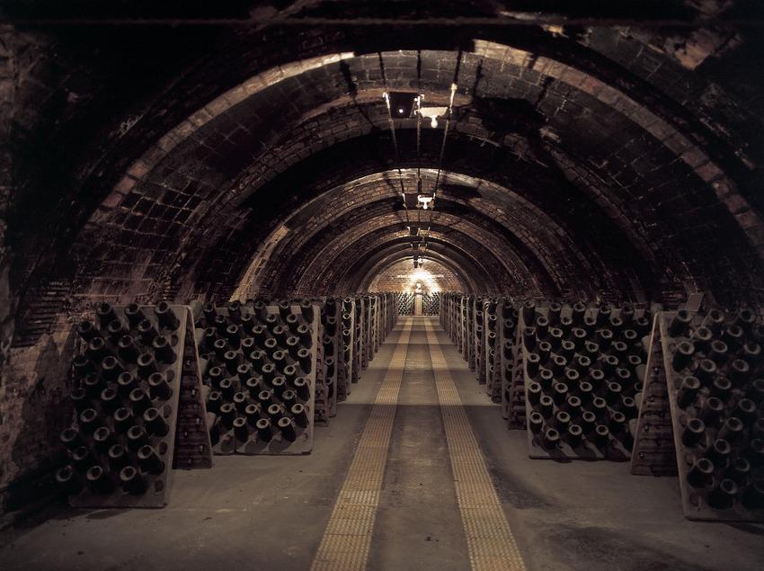 Interior of the Codorniu cellars