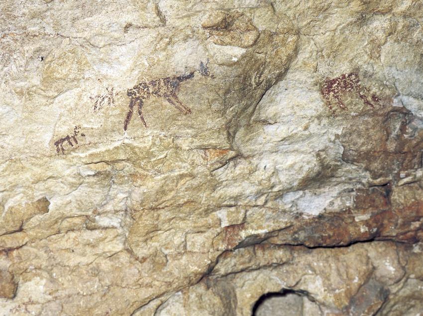 Pinturas rupestres de la Cova dels Vilars.  (Imagen M.A.S.)