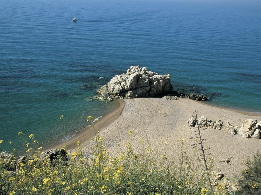 Der Strand von Vinyeta.