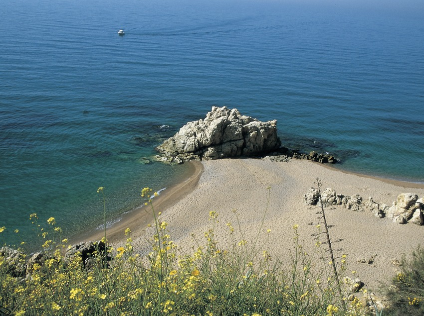 Playa de la Vinyeta.