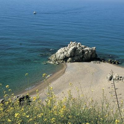 Platja de les Roques  (Turismo Verde S.L.)