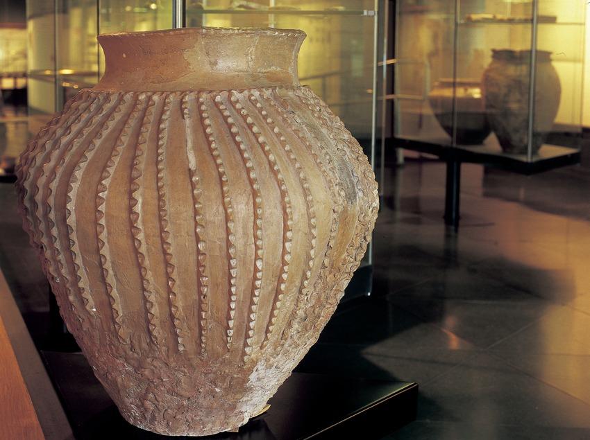 Vas de l'edat del bronze Museu Diocesà i Comarcal de Solsona.  (Imagen M.A.S.)