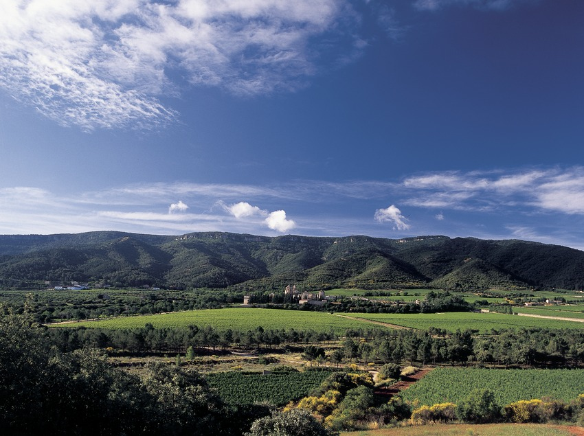 Royal Monastery of Santa Maria de Poblet