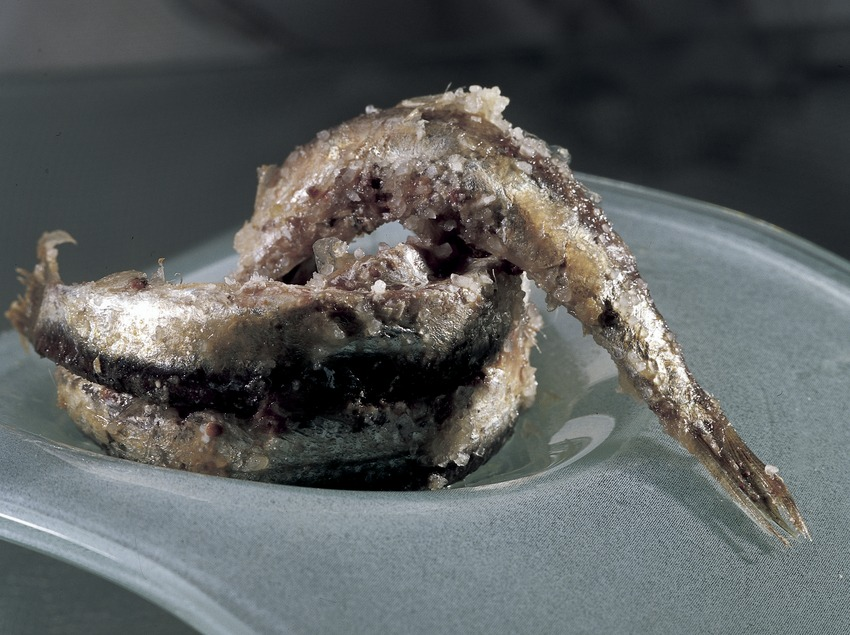 Anxoves amb sal.  (Imagen M.A.S.)