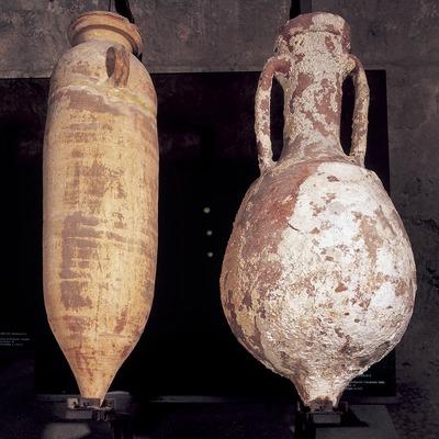 Àmfora i àmfora Lamboglia (segle I a.C.). Museu d'Arqueologia de Catalunya-Girona.  (Imagen M.A.S.)