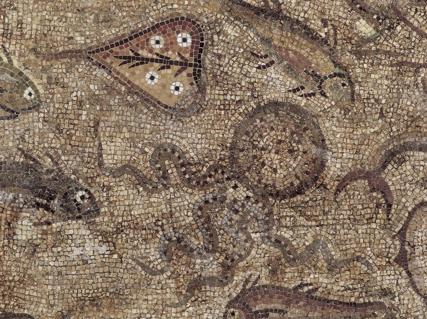 Detalle del mosaico de los peces (siglo III d.C.) procedente de la villa romana de Pineda. Museo Nacional Arqueológico de Tarragona.  (Imagen M.A.S.)