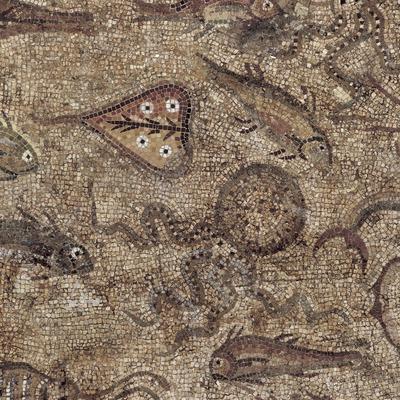 Detall del mosaic dels peixos (segle III d.C.) procedent de la vil·la romana de Pineda. Museu Nacional Arqueològic de Tarragona.  (Imagen M.A.S.)