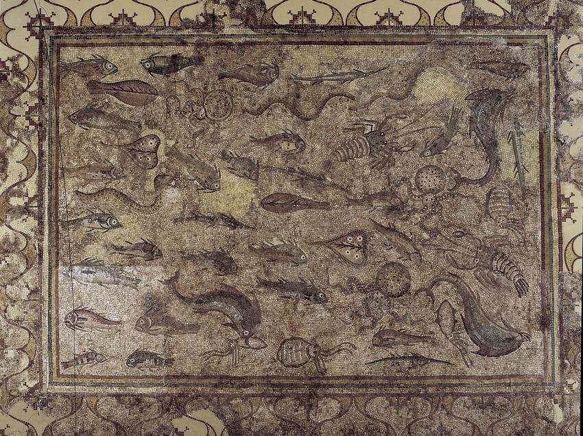 Mosaic dels peixos (segle III d.C.) procedent de la vil·la romana de Pineda. Museu Nacional Arqueològic de Tarragona.  (Imagen M.A.S.)