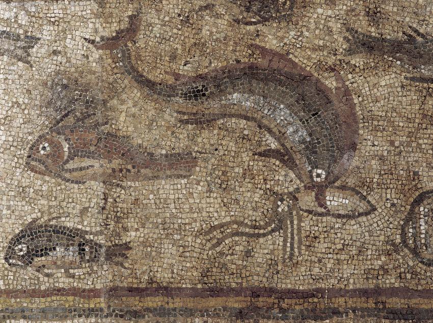 Détail de la mosaïque des poissons (IIIe siècle ap. J.-C.) provenant de la villa romaine de Pineda. Musée national archéologique de Tarragone.  (Imagen M.A.S.)