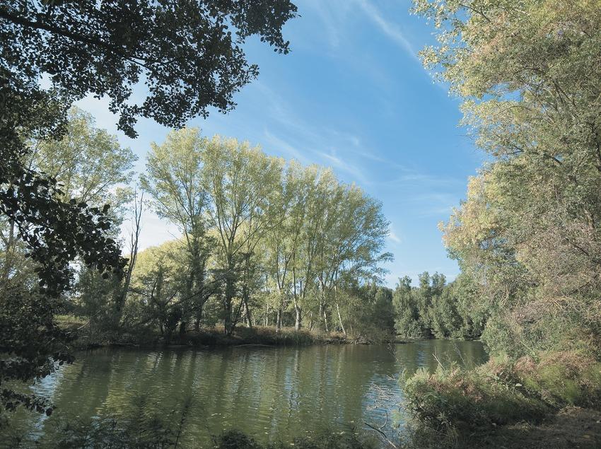 Río Fluvià  (Servicios Editoriales Georama)