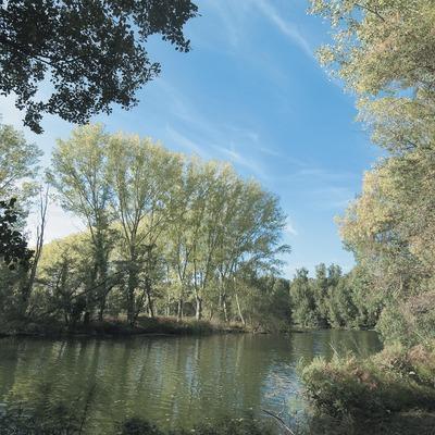 Der Fluss Fluvià  (Servicios Editoriales Georama)