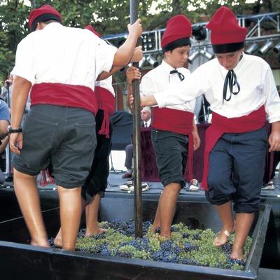 Festa de la Verema.  (Turismo Verde S.L.)