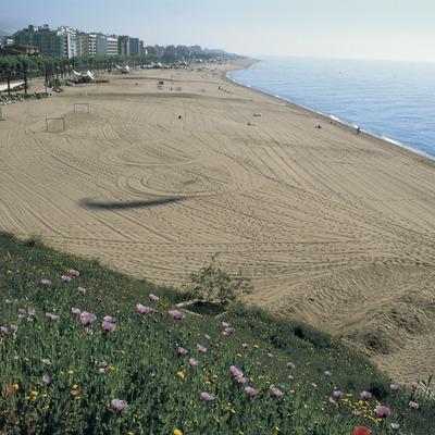Platja de Calella.  (Turismo Verde S.L.)