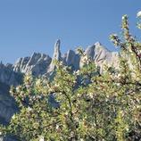 Massís de Montserrat.