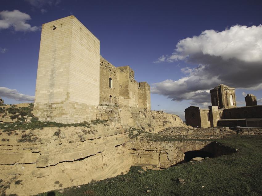 Castillo de la Suda y Seu Vella  (Miguel Raurich)