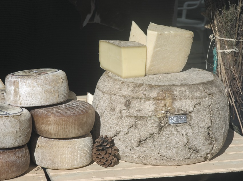 Cheeses in the autumn Agricultural Fair