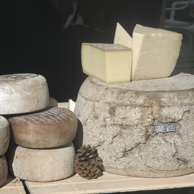 Cheeses in the autumn Agricultural Fair