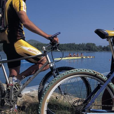 Bicicleta de montaña. Centro BTT Banyoles.  (Daniel Julián)