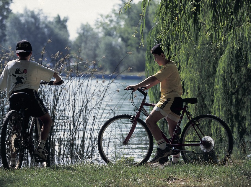 Mountain biking. Mountain Bike Centre, Banyoles.  (Daniel Julián)