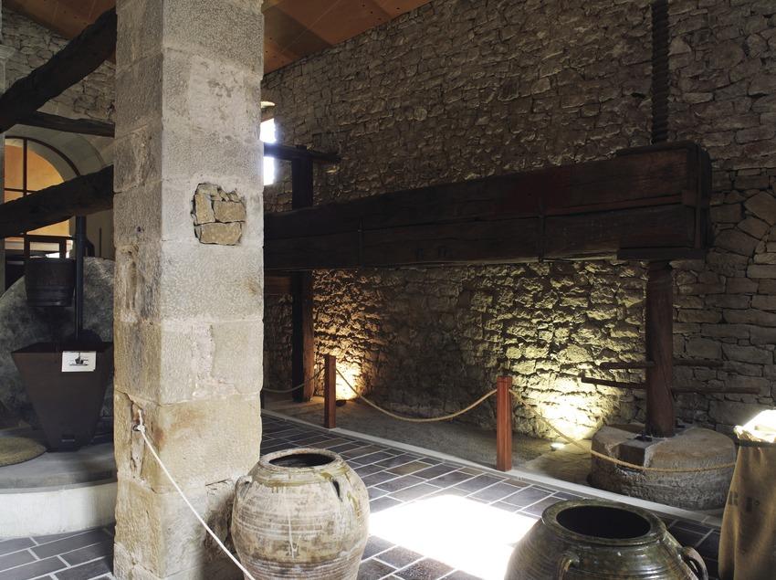 Olive Oil Ecomuseum