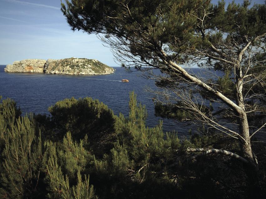 Vegetación litoral y Reserva Marina de las islas Medes.  (José Luis Rodríguez)