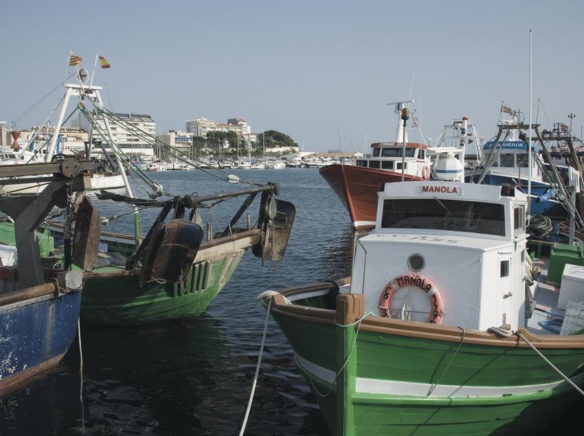 Embarcations dans le port  (Servicios Editoriales Georama)