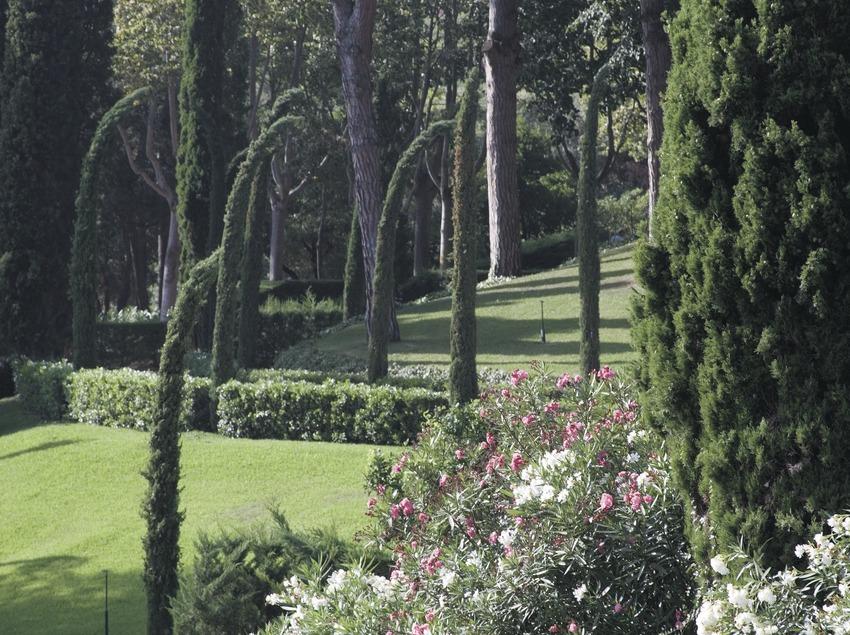 Santa Clotilde gardens  (Servicios Editoriales Georama)