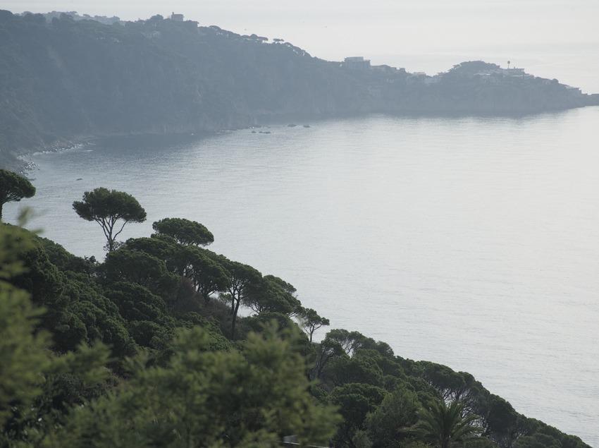 Coast of the Costa Brava  (Servicios Editoriales Georama)