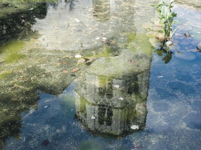 Campanar de l'església del monestir de Sant Pere de Galligants reflectit en l'aigua  (Servicios Editoriales Georama)