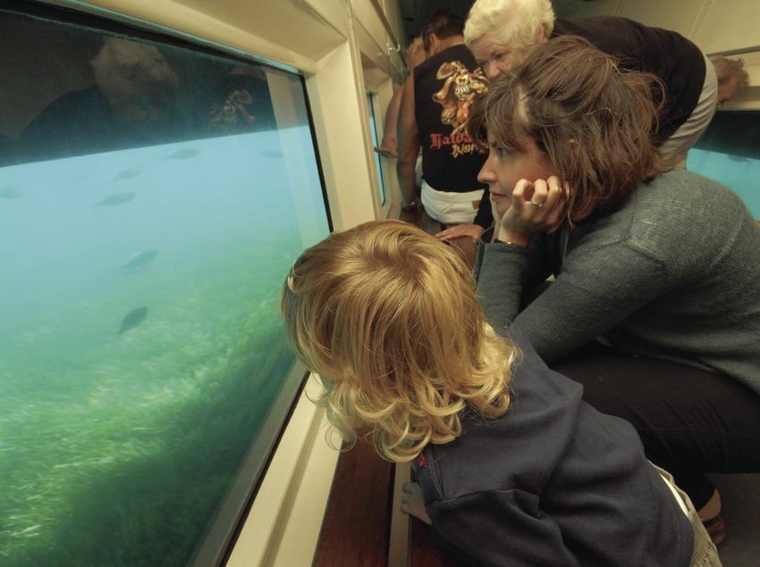 Visita a la Reserva Marina de les illes Medes.  (José Luis Rodríguez)