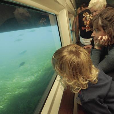 Nautilus Excursiones Marítimas