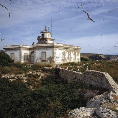Far de la Reserva marina de les illes Medes.  (José Luis Rodríguez)