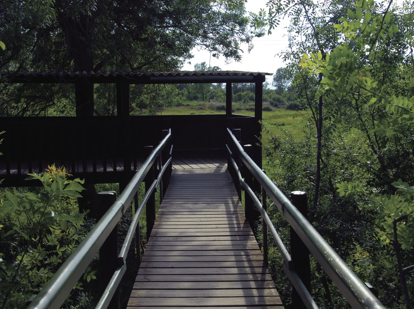 Parque Natural de Aiguamolls de l'Empordà.  (José Luis Rodríguez)