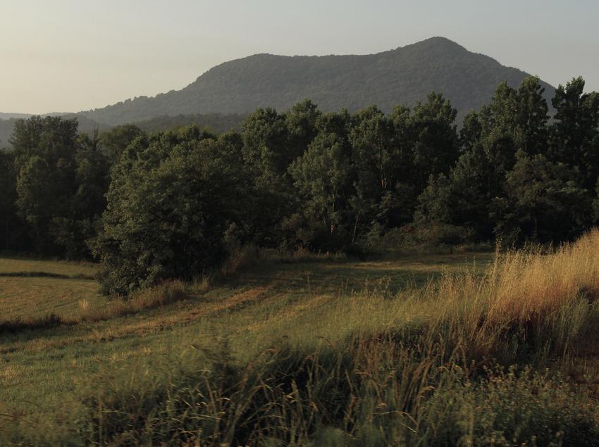 Der Naturpark Vulkane der Garrotxa.