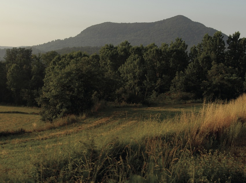 La Garrotxa Volcanic Area Natural Park.
