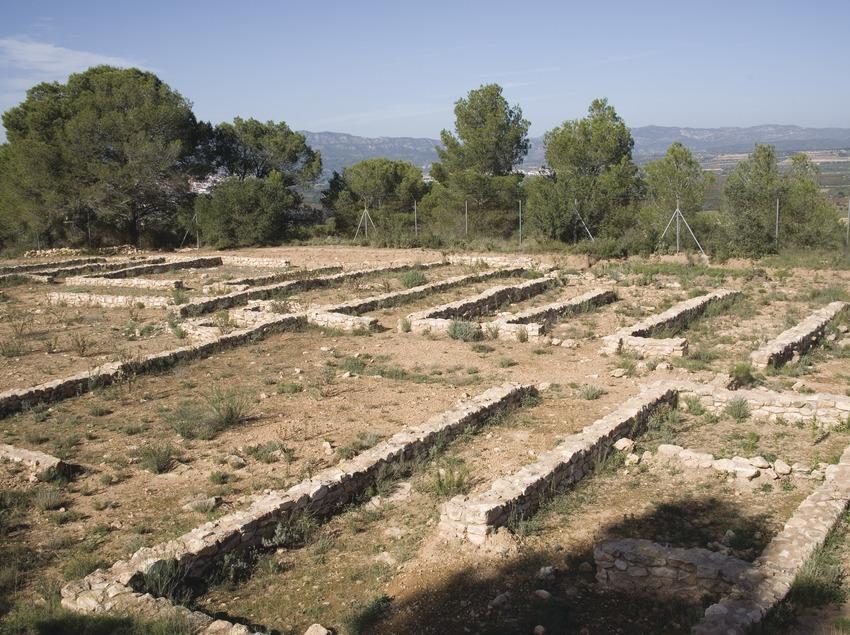 Poblado ibérico del Castellet de Banyoles  (Miguel Raurich)