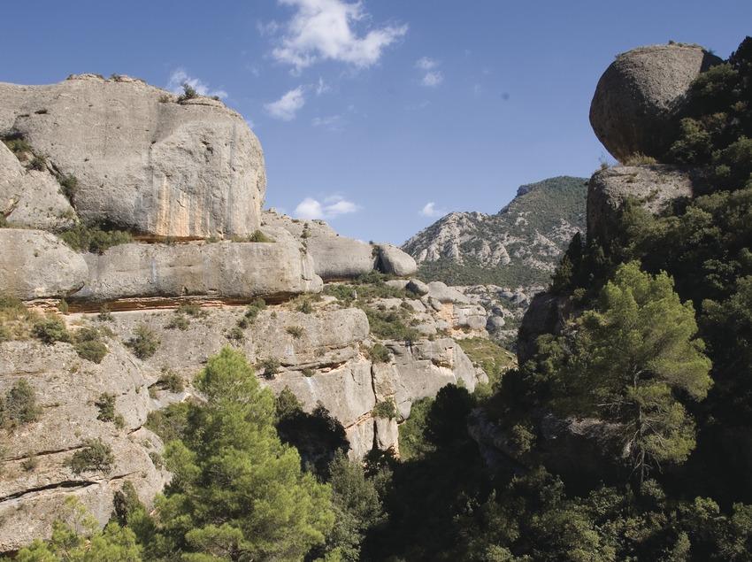 Congost de Fregarau a prop de l'ermita de Sant Bartomeu a la serra de Montsant  (Miguel Raurich)