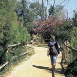 Excursionismo en el itinerario de la Reserva Natural del Remolar-Filipines.  (Turismo Verde S.L.)