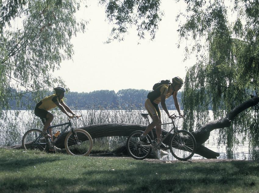 Bicicleta de montaña. BTT Banyoles.  (Daniel Julián)