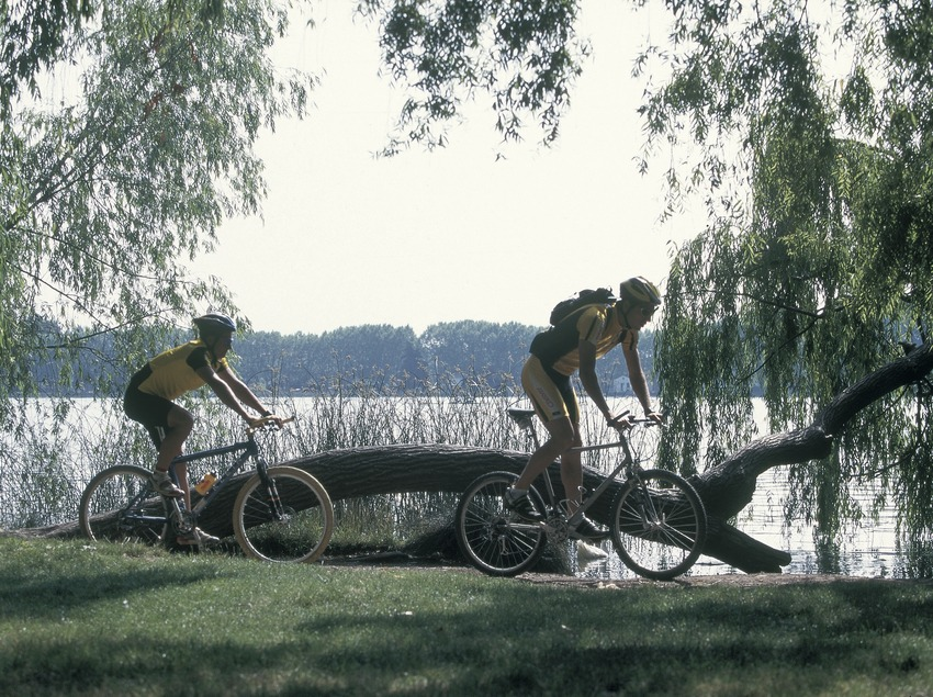 Bicicleta de montaña. BTT Banyoles.